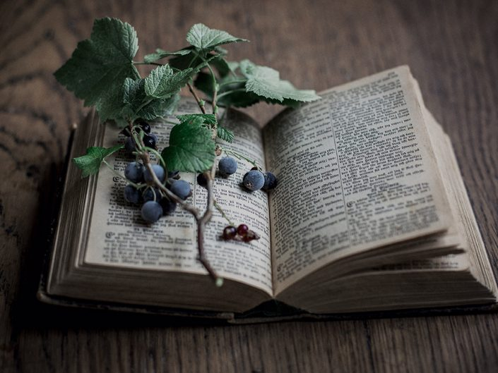 Book of Berries
